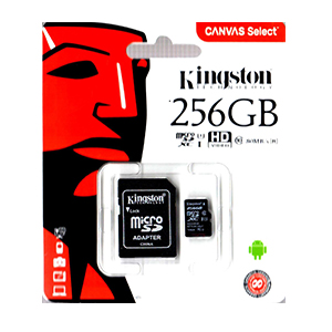 Kingston 256GB Micro SDXC Memory Card Class 10